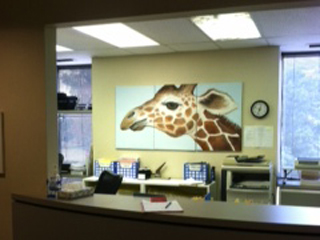 Charlotte child surgeon giraffe photo